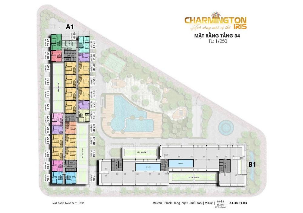 mat-bang-b1-tang-34-du-an-charmington-iris